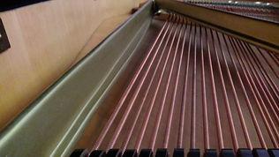 Клавиатура рояля - слоновая кость и груша, целая дека,чугунная рама, демпфера, молотки иструнырояля б/уФерстер A.Forster