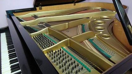 Рама вирбеля (колки)немецкого рояля б/уФерстерForster
