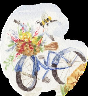 Bike1.tif