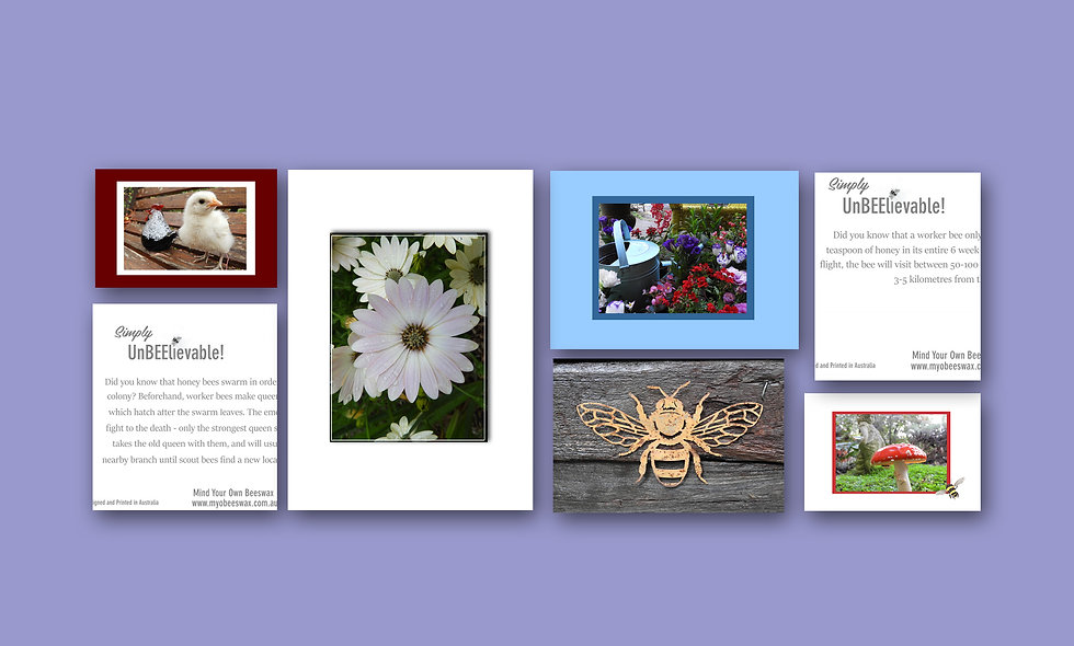 Flowers and Collectibles Design Card Set