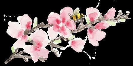 Blossom.tif