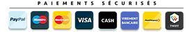 2010-payment copie.png