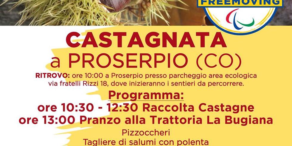 Castagnata a Proserpio