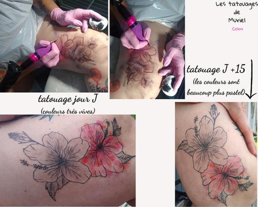 Hibiscus les tatouages de muriel toulous