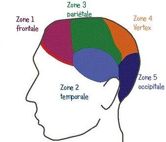 Zones tricopigmentation les tatouages de