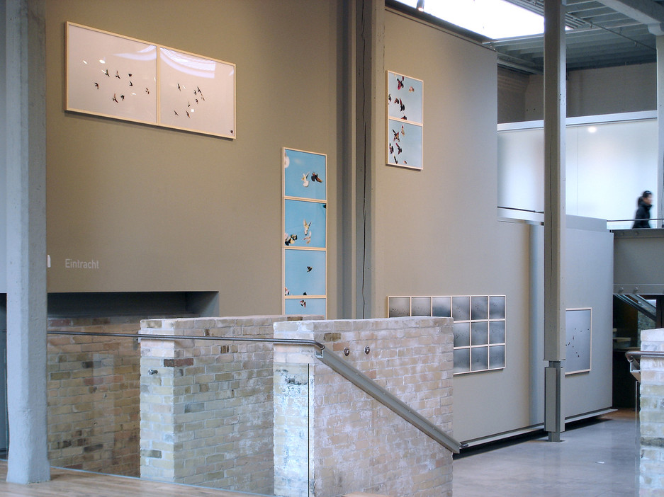 Corkin Gallery Eintracht 2005