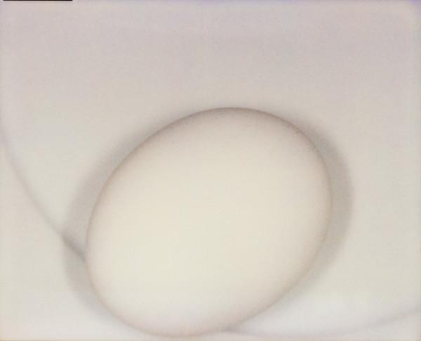 Ei auf Teller 19 09 08