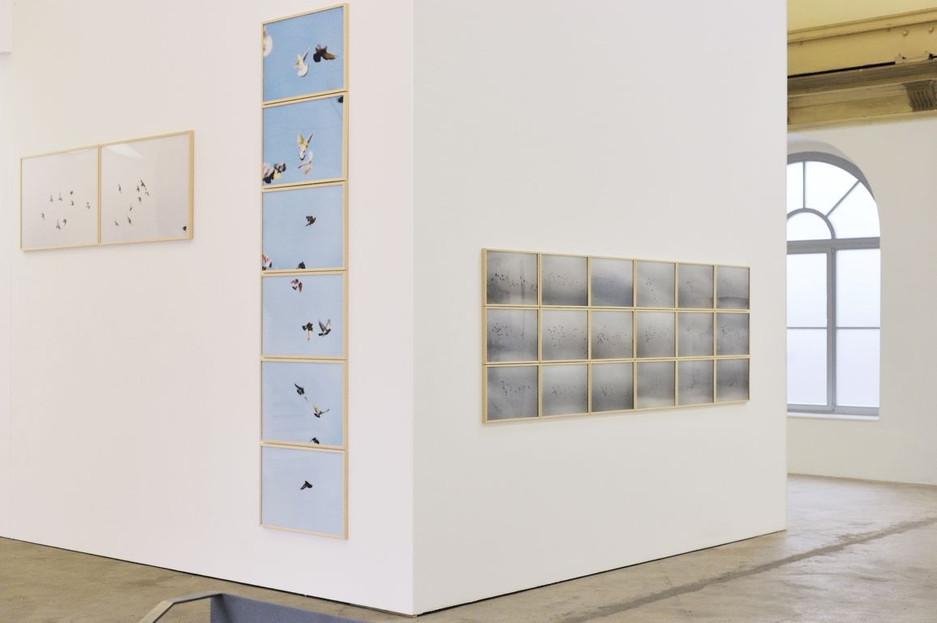 Galerie Dogenhaus