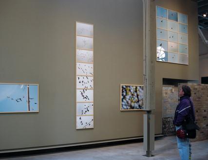 Eintracht Corkin Gallery 2005.JPG