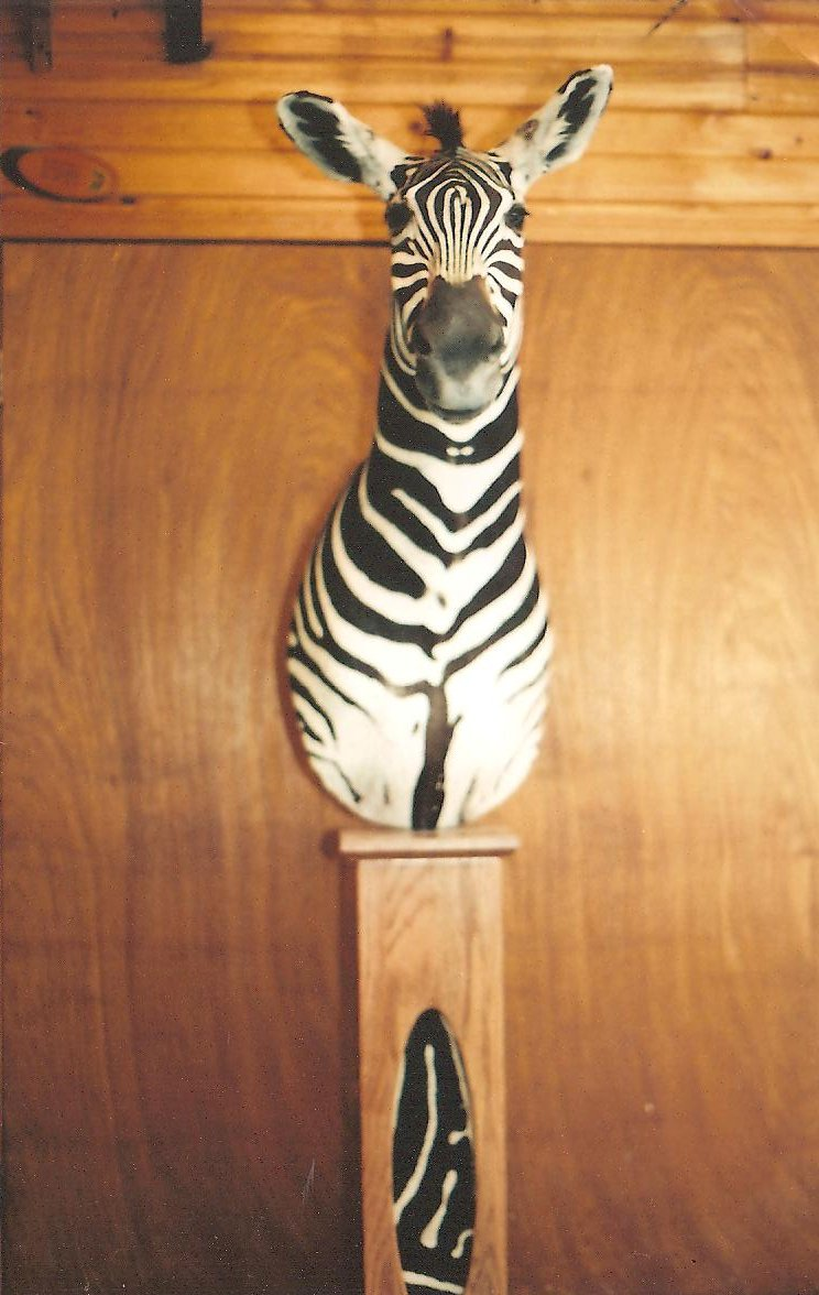 Zebra on Pedestal.jpg