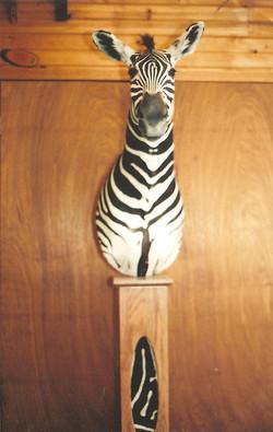 Zebra on Pedestal.jpg