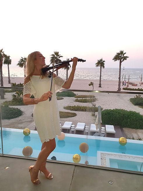 Beach Electric Violin.jpg