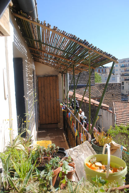 pergola en bambou - montpellier