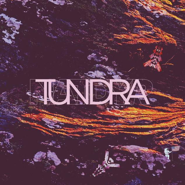 Natdyr - Tundra