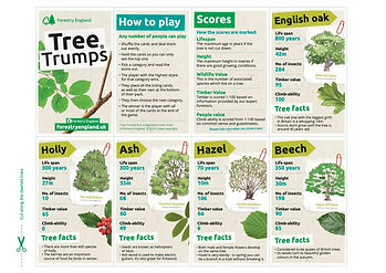 Forestry England top trumps pg 1.jpg