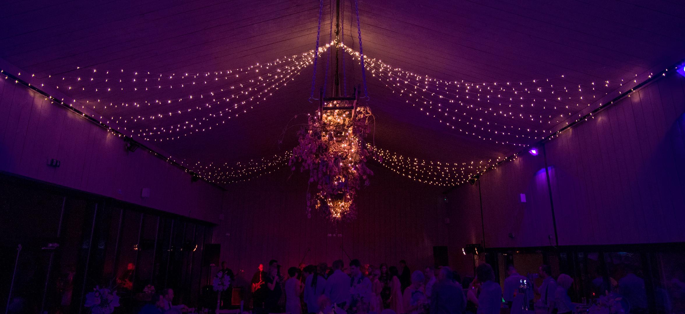 Primrose Hill Farm Wedding Venue Party Lights