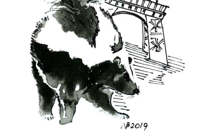 Skunk In Paris