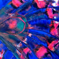 Organic Kaleidoscope  36x36 acrylic