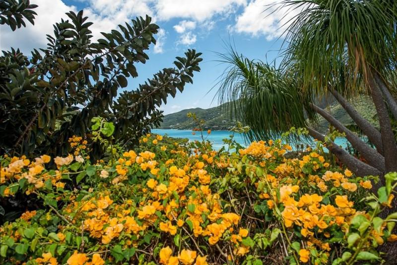 Saint John Virgin Island Vacation
