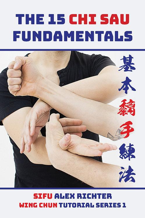 15 Chi Sau Fundamentals
