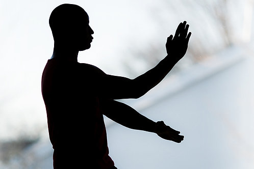 One Month Online Wing Tsun Classes