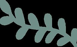 planta-3