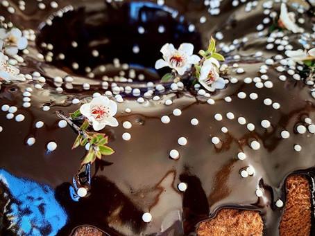 Lush Chocolate Pecan Torte
