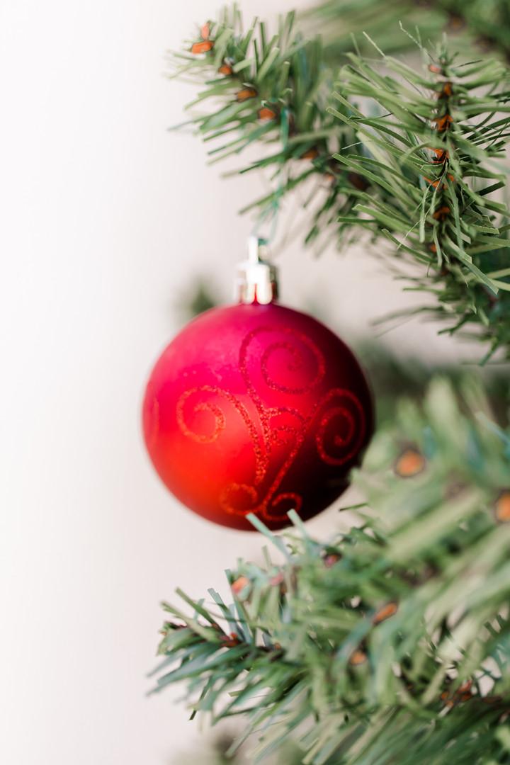 Christmas Minis-11.jpg