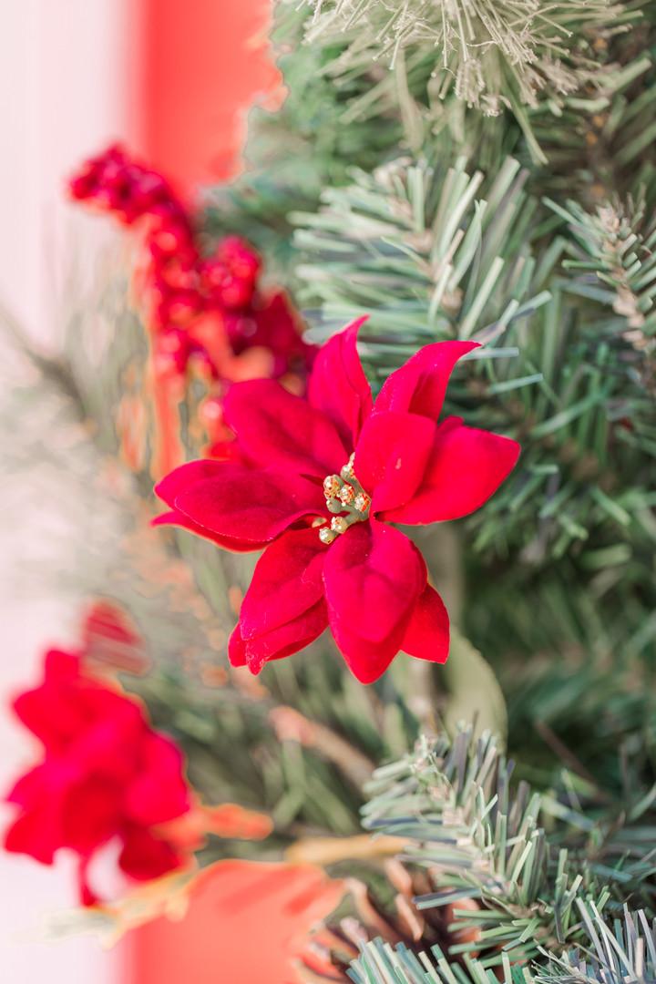 Christmas Minis-5.jpg