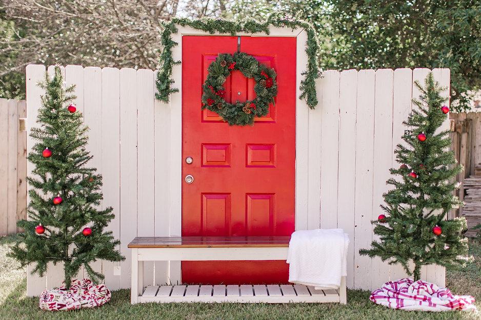 Christmas Minis-3.jpg