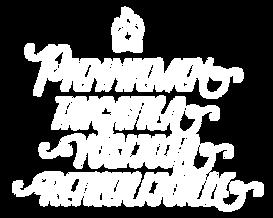 pienniemi-fi.png