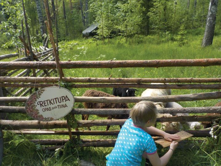 Retkitupa ja lampaat