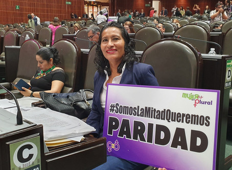 Abelina López pide paridad pero vota a Favor del recorte de 75% de presupuesto de INMUJERES.