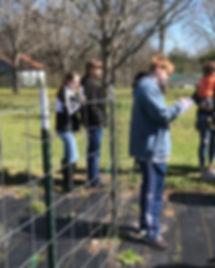 HS Shannon's Garden.jpg