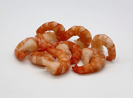 BT Shrimps.jpg