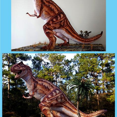 Vintage Rex display