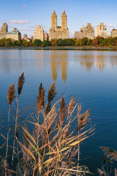Central Park in Manhattan, USA