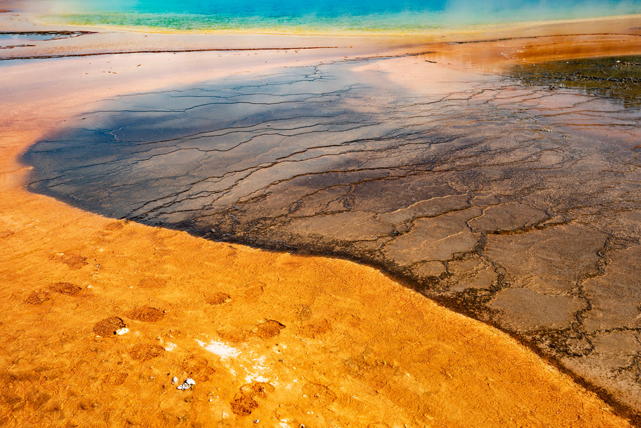 Bison footprints in the Grand Prismatic Spring in Yellowstone NP, USA