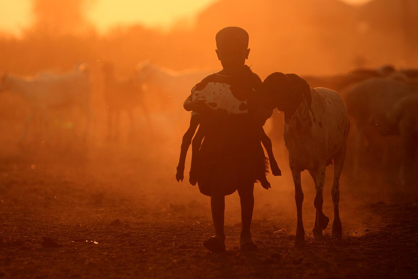 Masai child & goats near Lake Manyara, Tanzania