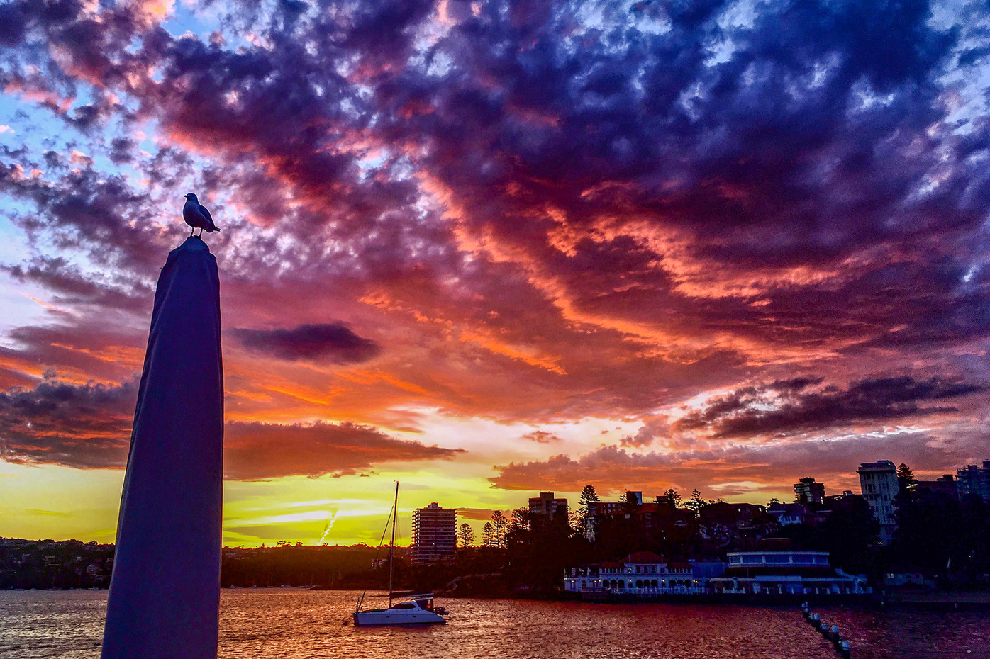 Sunset from Manly Wharf in Sydney, Australia