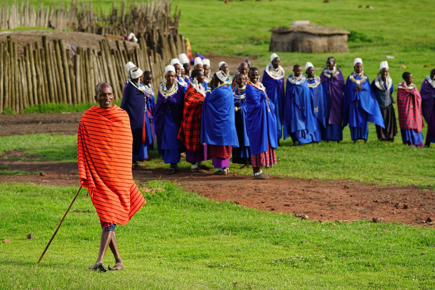 Masai village in the Ngorongoro Crater highlands, Tanzania