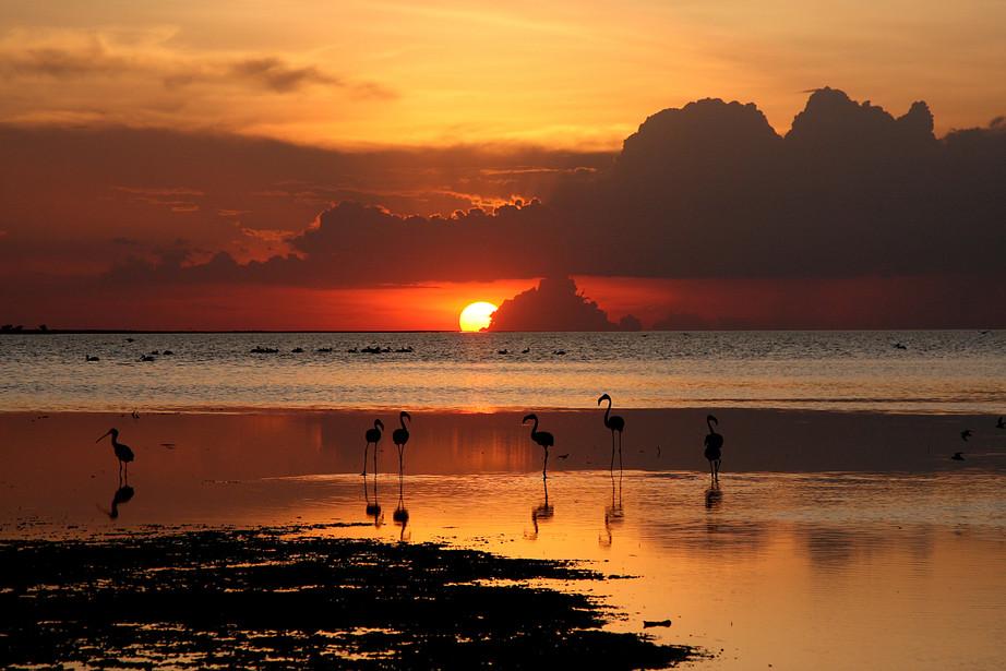 Sunset over Lake Eyasi, Tanzania