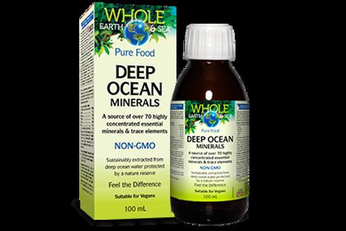 Deep Ocean Minerals - Whole Earth & Sea