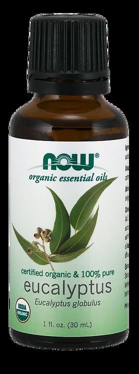 Eucalyptus Globulus Oil - Organic - NOW®
