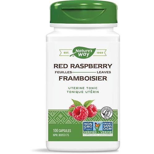 Red Raspberry - Nature's Way