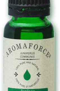 Juniper - Juniperus Communis - Aromaforce®