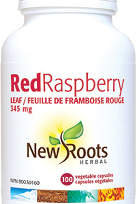 Red Raspberry Leaf - New Roots