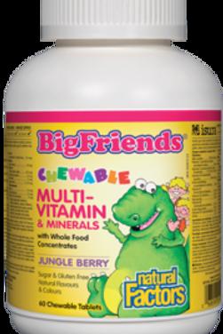 Multi-Vitamin & Minerals - Big Friends  Chewable - Natural Factors