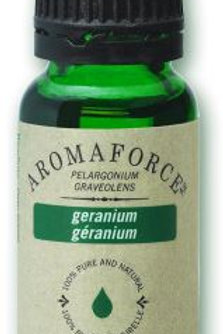 Geranium - Pelargonium Graveolens - Aromaforce®