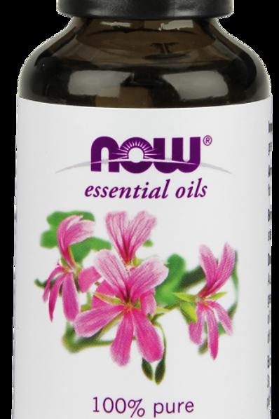 Geranium - Pelargonium Graveolens - 100% Pure - NOW®